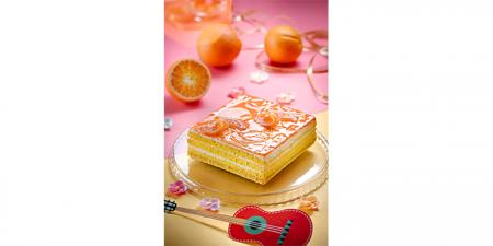 Торт ОранжБум 800 г